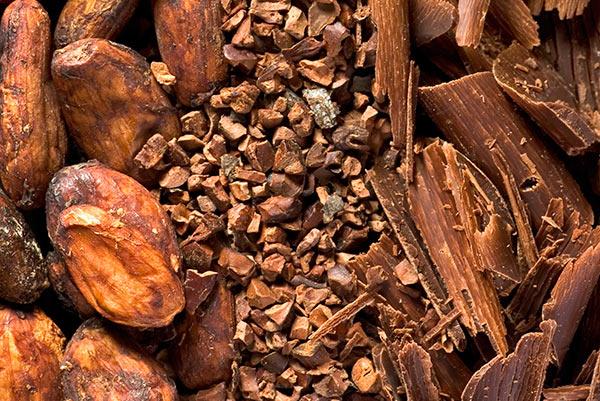 Organic Cacao Nibs | Fresh Pressed Industries